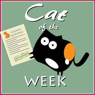 Cuddlywumps Cat Chronicles Cat of the Week badge