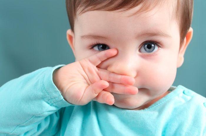 Sejumlah Informasi Tentang Flu pada Bayi