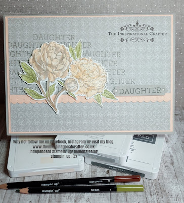 Stampin Up Peony Garden Peony stamp set and dies