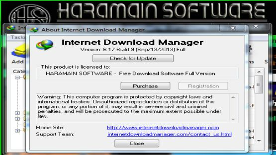 IDM 6.17 screenshot 4