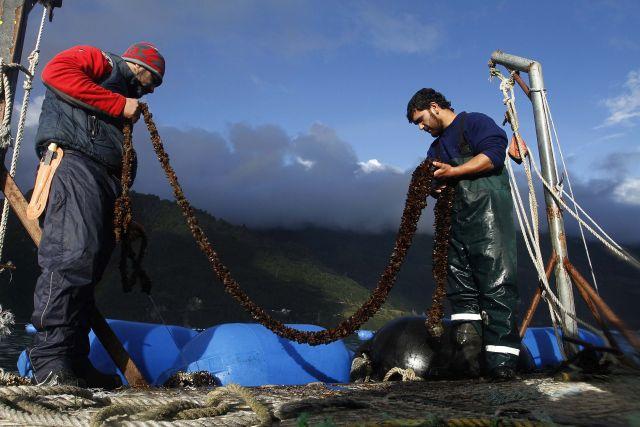 Recursos para pequeños acuicultores