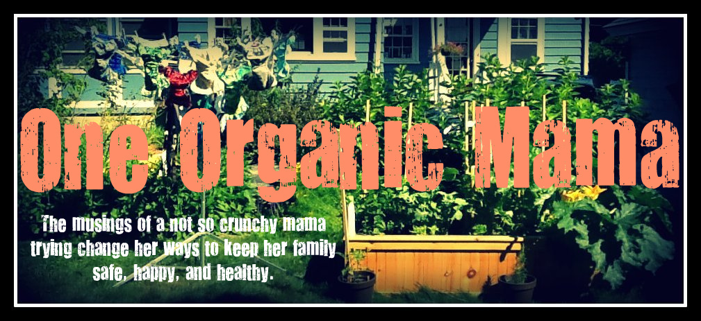 One Organic Mama: Natural Food Coloring for Organic Kids