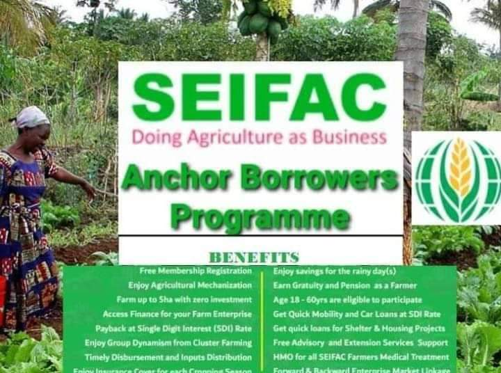 SEIFAC terms and conditions (Smallholder Economic Interest Farmers Agricultural Cooperative)
