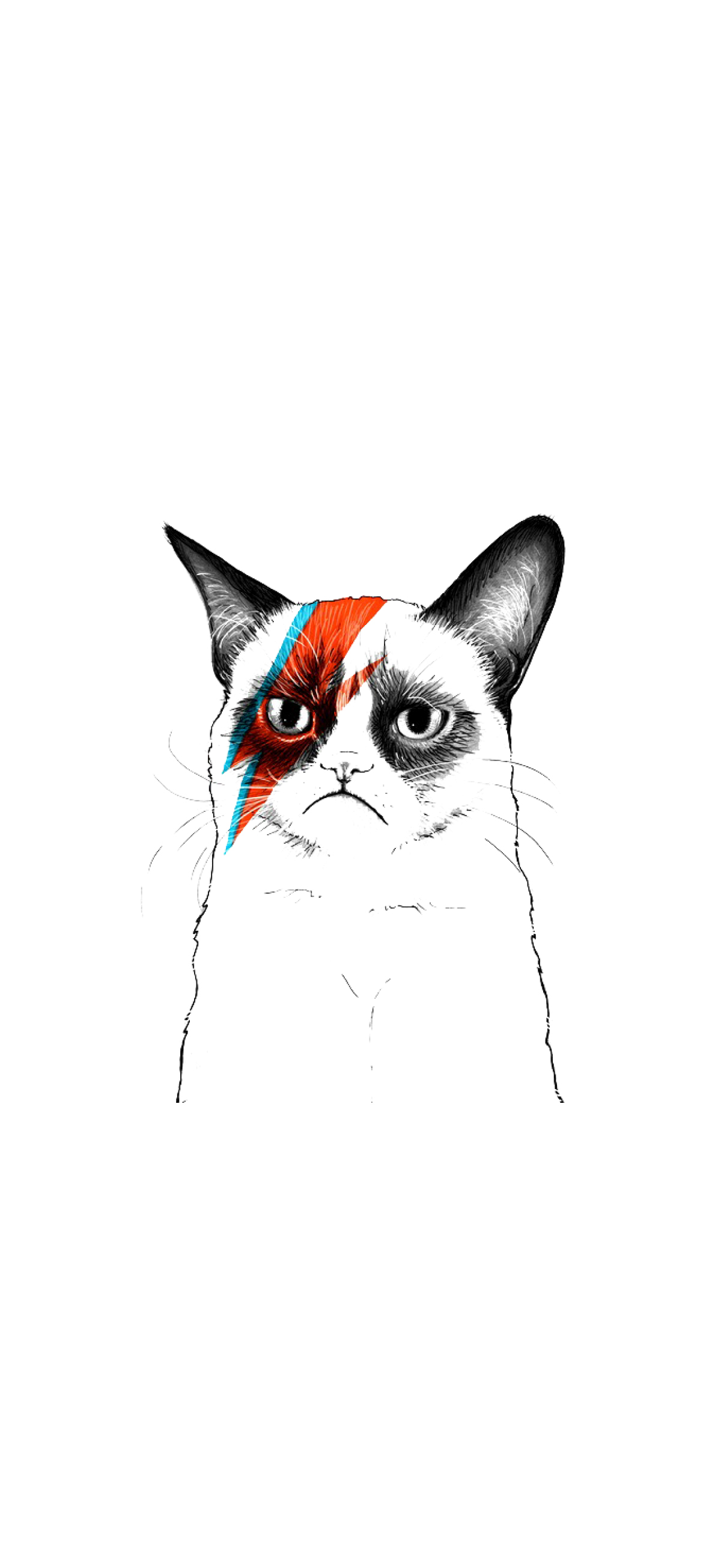 cat bowie wallpaper iphone hd