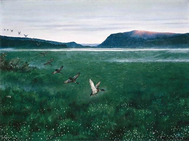 a Theodor Kittelsen 1897 painting of ducks landing in grassy wetlands