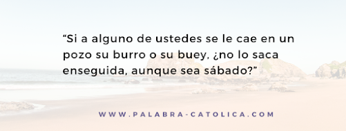 Evangelio del Dia Viernes 30 de Octubre - San Lucas 14, 1-6