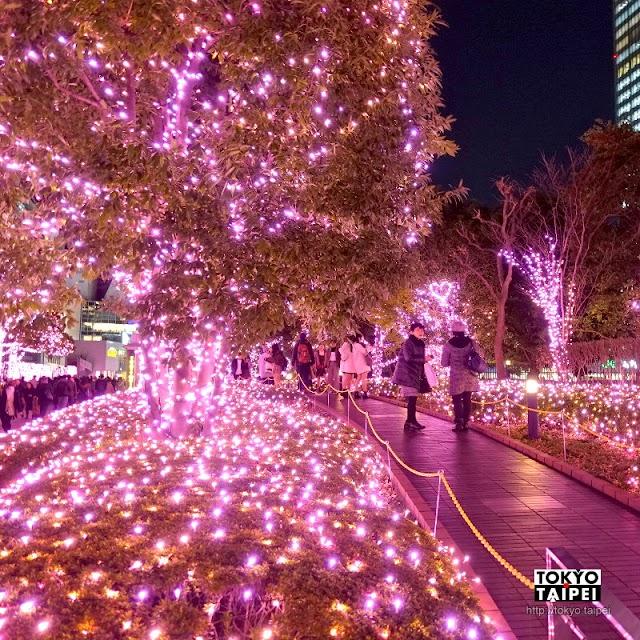 【新宿空中遊城燈彩】廣場被燈泡點亮 用不同色彩迷幻聖誕樹占卜