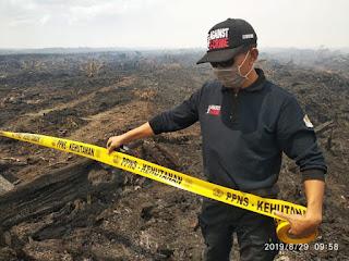 PT KS Terbukti Membakar Lahan Seluas 3 Ribu Hektar di Kalteng