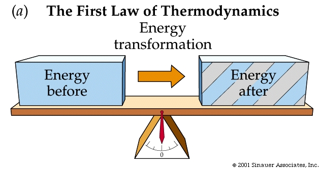 How do i write an essay on the first law of thermodynamics?