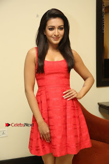 Actress Catherine Tresa Latest Pos in Red Short Dress at Intex Air Conditioners Launch  0021.jpg