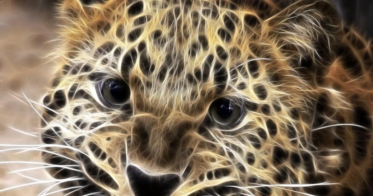 Fondo De Pantalla De Leopardo Fondos De Pantalla Gratis: Fondo De Pantalla Animales Leopardo Efecto
