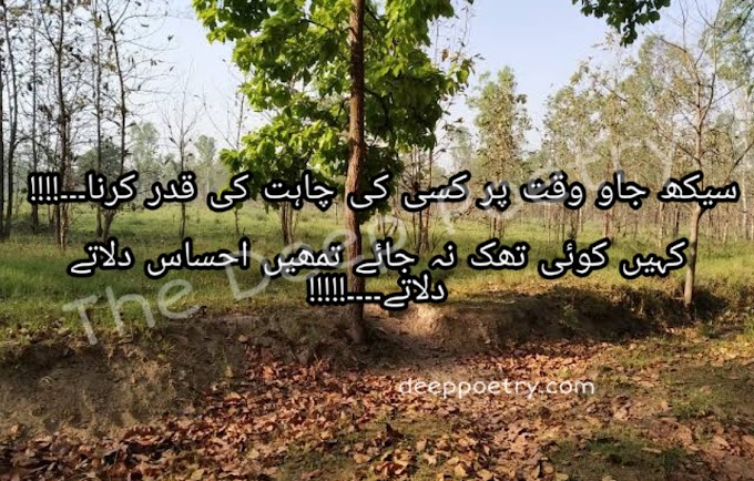 Seekh Jao Waqt Par Kaisi Ki Chahat Ki Qadar Karna   Kahy Koi Tak Na Jay Tumhe Ehsas Dilaty Dilaty