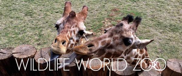 http://www.awayshewentblog.com/2015/01/exploring-az-wildlife-world-zoo.html