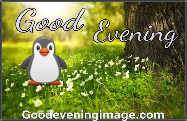 Cute good evening wallpaper for whatsapp