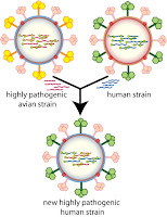 MCQ on Pathogenic Viruses, Structure and Function