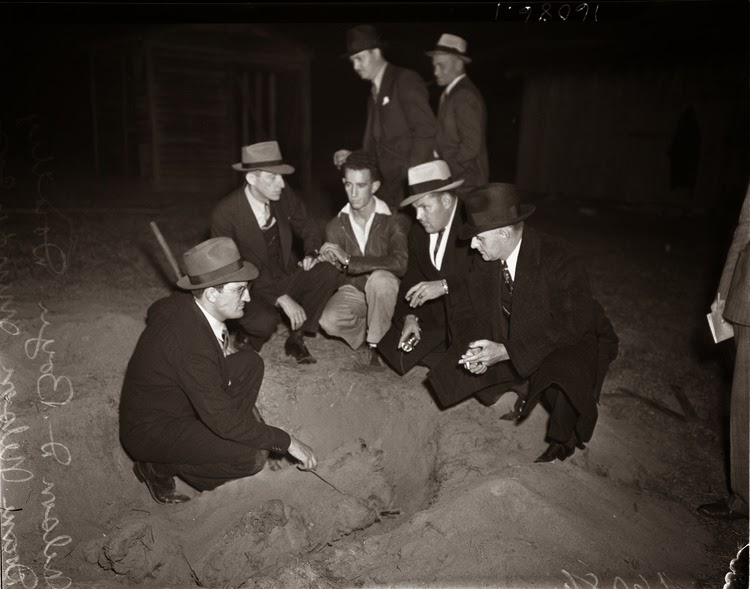 the fbi and the american gangsters in the 1920s1930s