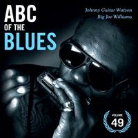 ABC of the blues volume 49