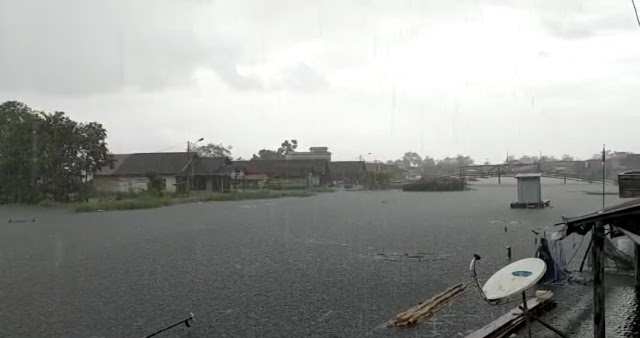Banjir di Desa Sardangan Tanah Bumbu Sejumlah Buaya Keliaran di Sekitar Rumah Warga