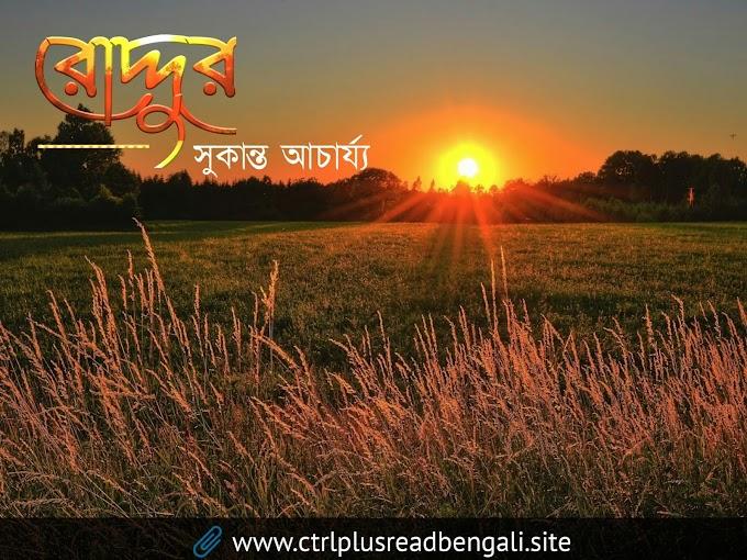 রোদ্দুর | Bengali modern poetry