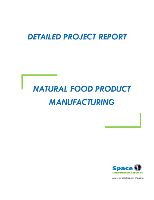 Project Report on Natural Food Product Manufacturing