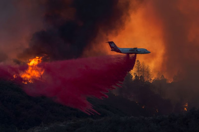 This Is What a California Wildfire Looks Like