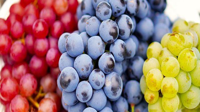Grapes Fruit Benefits अंगूर खाने के फायदे