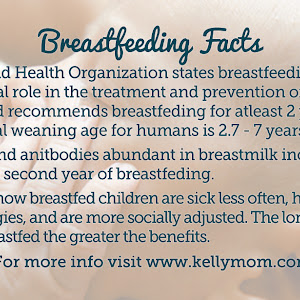 Natural Mama Nz Breastfeeding In Public Info Cards
