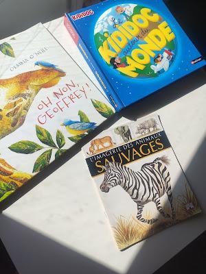 livres histoires afrique découverte du monde