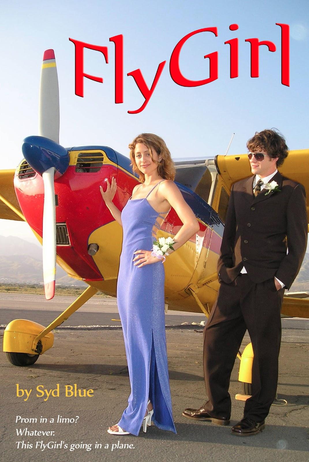 Bye girl fly girl book