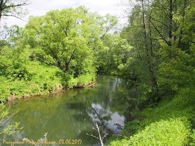 река Восьма фото