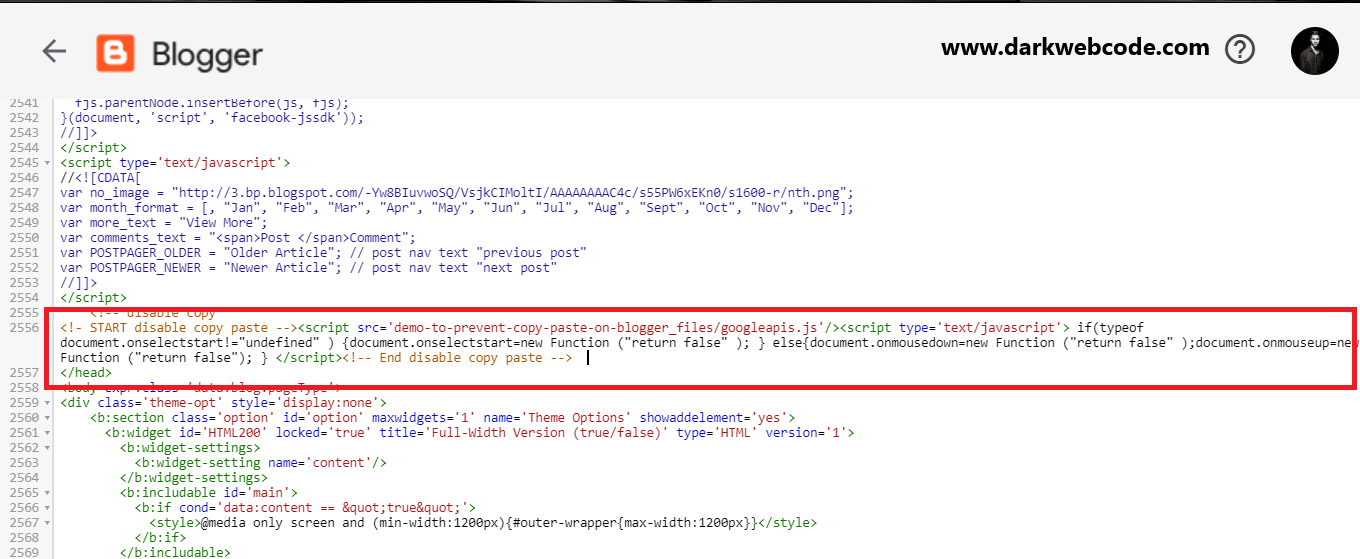 JavaScript code pasted above closing head tag