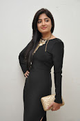 Poonam Kaur dazzling at Thikka audio-thumbnail-4