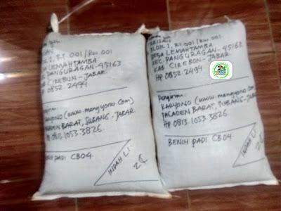 Benih Padi Pesanan  TARISAN Cirebon, Jabar.     (Setelah di Packing).