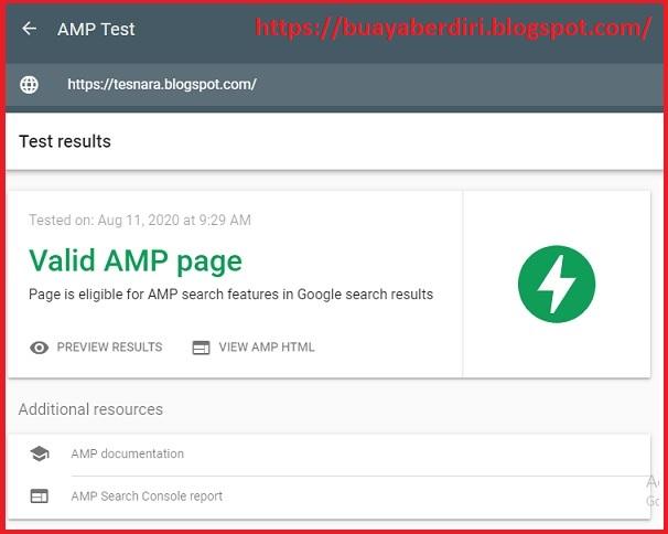 Valid AMP Page - Template AMP Premium di Infinite AMP