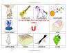 10 palabras u objetos que inician con la letra U