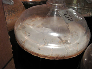 Nice looking pellicle on my Dark Saison III.