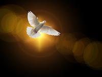 Peranan Roh Kudus Bagi Gereja (RPP 11 Kelas 10 Semester 2)