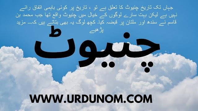 چنیوٹ ثقافت اردو ميں | Chiniot culture in Urdu