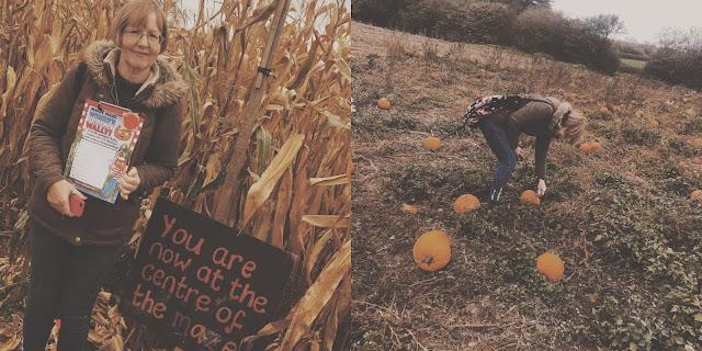 mum picking pumpkins