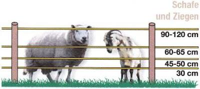 Soros villanypásztor rendszerek juhok és kecskéknek