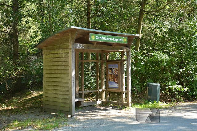 Kolejka po parku Center Parcs Bispinger Heide w Dolnej Saksonii w Niemczech