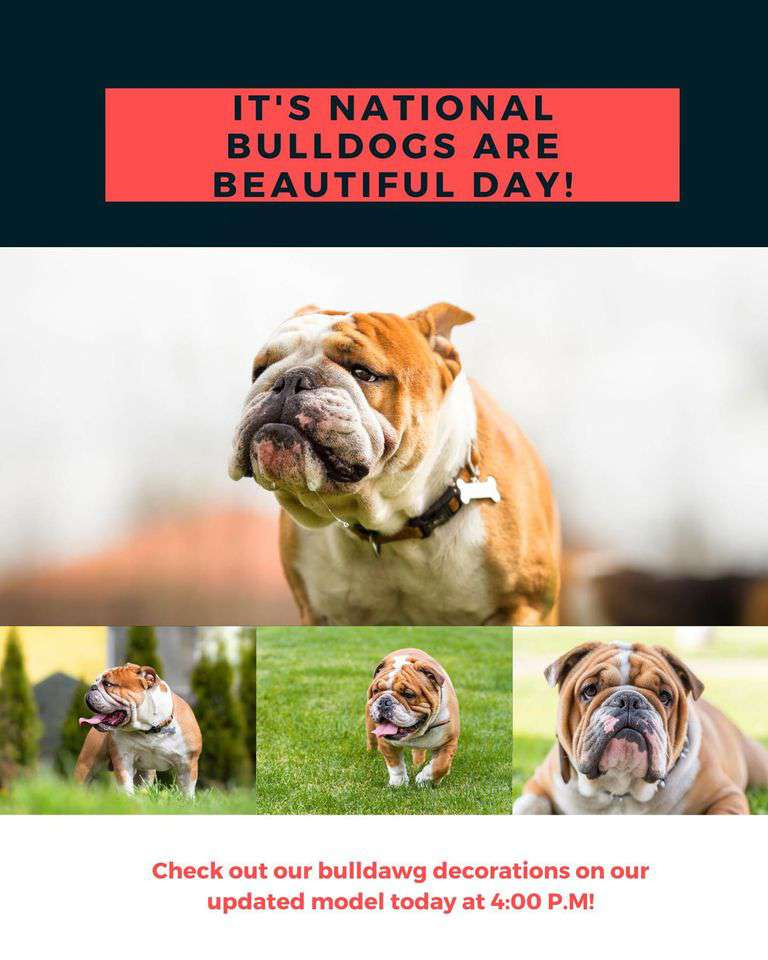 National Bulldogs Are Beautiful Day Wishes Pics