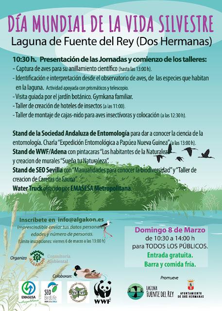 Día mundial de la vida silvestre - Laguna de Fuente del rey. Grupo Local SEO-Sevilla.