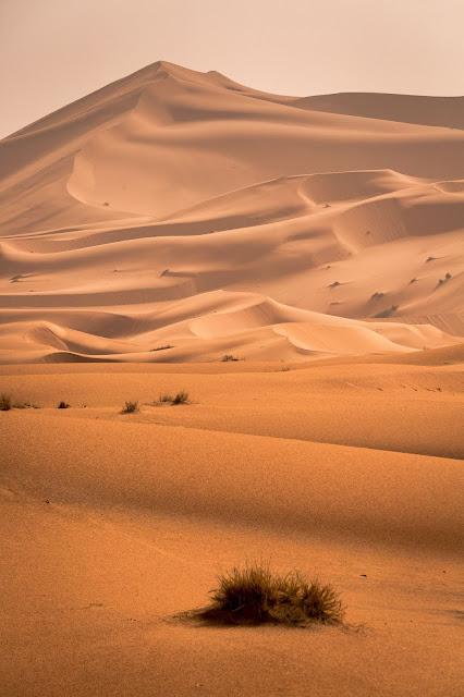 Opter pour des vacances au Maroc, pays de  belle nature