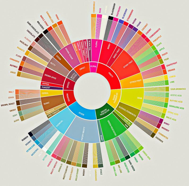 rebel, projekt rebel, kolo smakow kawy, coffee tester's flavor wheel, zycie od kuchni, cupping baristyczny