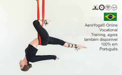 formacao aerial yoga brasil