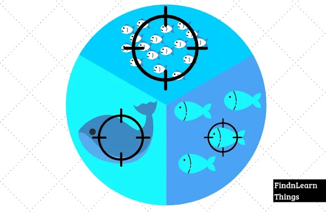 What's Make Spear Phishing Different From Plain Old Phishing And Whaling ?