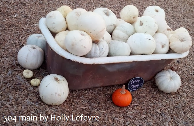 cotton candy white pumpkins in a tub by 504 Main