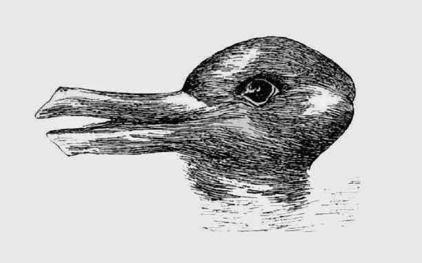 Test: You See A Duck Or A Rabbit?