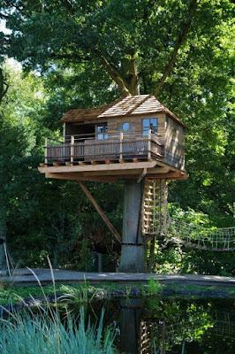 Desain Rumah Pohon